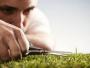 Entretenir sa pelouse en 3 étapes simples et efficaces