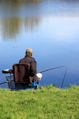Une pêche réussie avec des montures à poisson mort de qualité