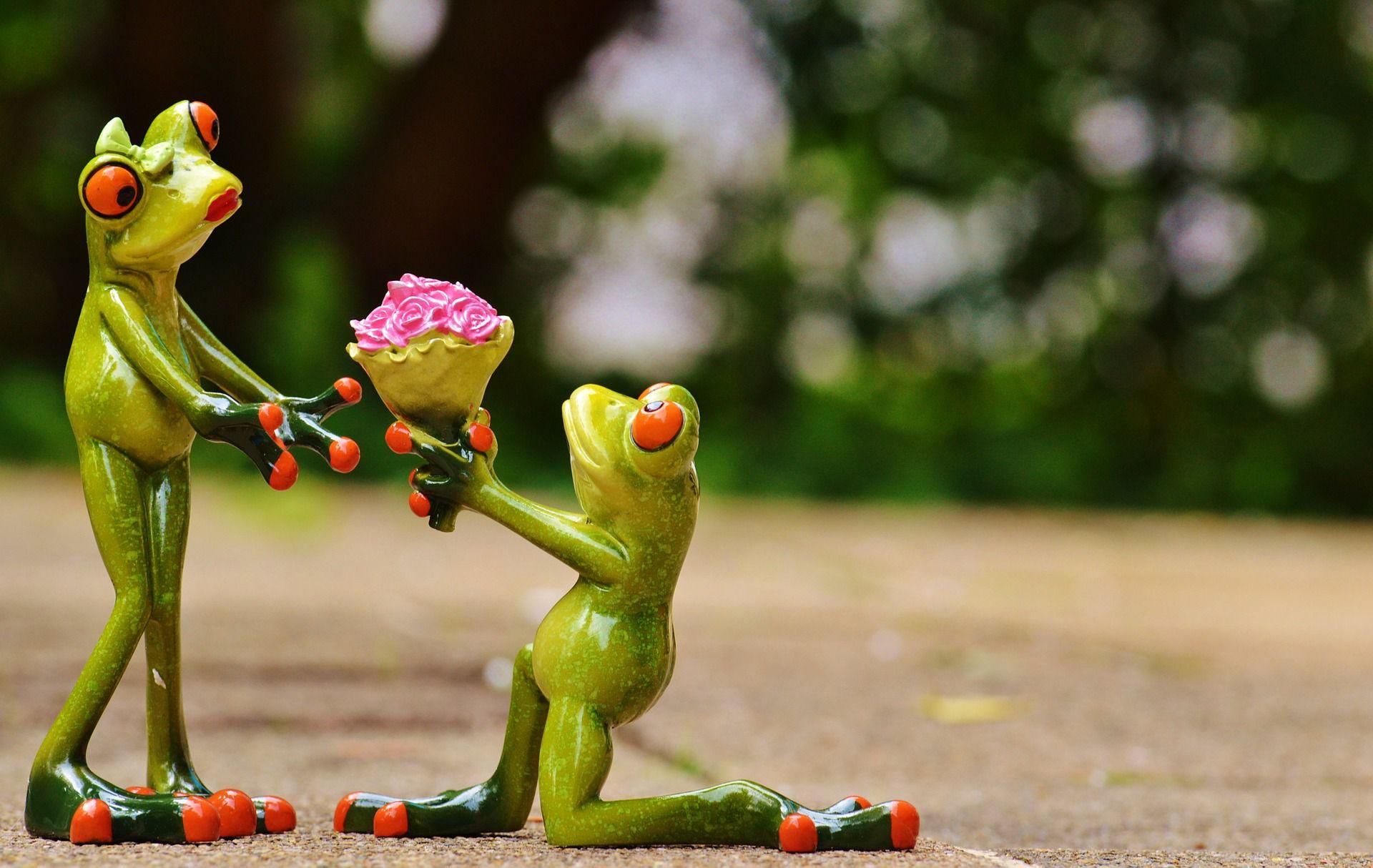 Anniversaire de mariage quel cadeau offrir votre femme - Quoi donner en cadeau pour des noces d or ...