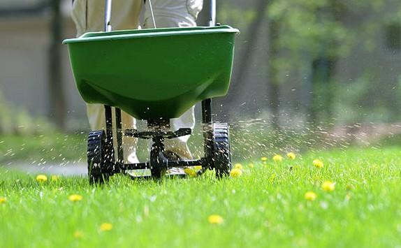 engrais-gazon-fertilisant